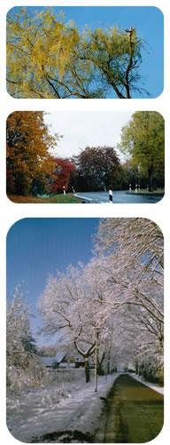 jaargetijden in de natuur